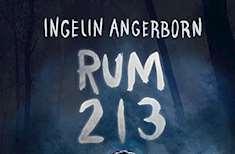 del av omslagsbild bok Rum 213